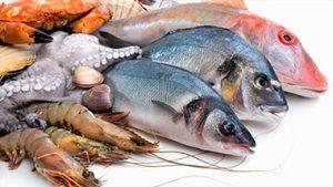خرید عمده ماهی قزل آلا رنگین کمان شهرکرد