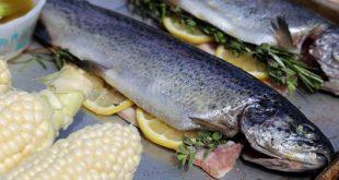 صادرات ماهی قزل آلا لرستان به عراق