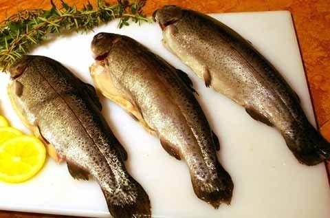 بازار فروش ماهی قزل آلا در ایران