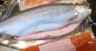 خرید فیله ماهی قزل آلا به صورت آنلاین