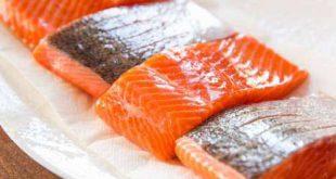 صادرات ماهی قزل آلا به روسیه در کمترین زمان