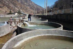 سیستم مدار بسته پرورش ماهی قزل آلا در مازندران
