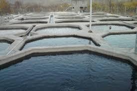 سیستم مدار بسته پرورش ماهی در رشت