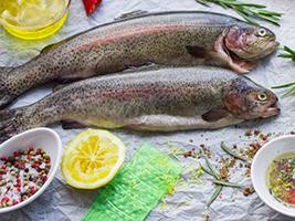 قیمت ماهی قزل آلا سردابی در میادین تره بار