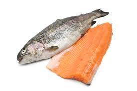 قیمت خرید ماهی قزل الا در مراکز فروش تهران