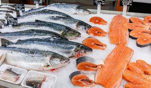 خرید ماهی قزل آلا