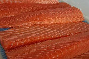 فروش ماهی سالمون