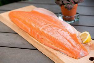 خرید ماهی سالمون