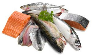 ماهی آزاد سالمون در کجاها زندگی می کند: