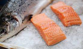 فروش ماهی قزل آلا در کشور