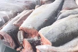 فروش فیله ماهی قزل آلا با قیمت عالی