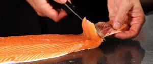 قیمت ماهی سالمون در ایران